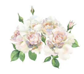 A bouquet of roses on a white background. For congratulations and invitations for weddings, birthdays, mother's days