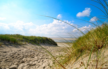 Fototapeten Nordsee Dune beach on the North Sea island Langeoog in Germany with clouds on a beautiful summer day, holidays in Europe