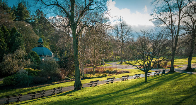 Benches in the Valley Gardens, Harrogate