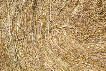 detail of bale of straw