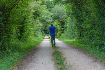 Beautiful men walking on the rural road on summer day