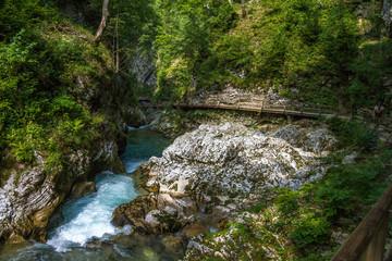 Foto op Canvas Oceanië Gole del Vintgar, Slovenia