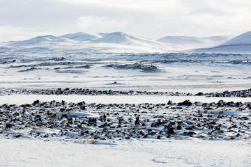 schneebedecktes Lavafeld in Island
