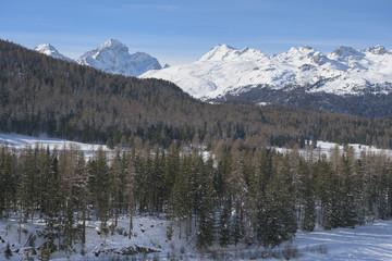 Winterlandschaft bei Pontresina, Graubünden, Schweiz