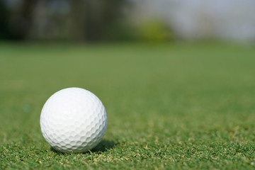 Close-up on a golf ball on a green grass