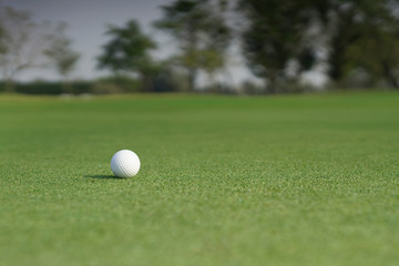 Golf ball on a green grass with blank copy space