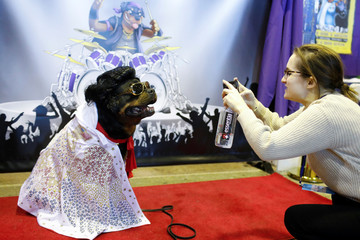 Talos the Rottweiler is photographed at the Rottapalooza booth during the AKC Meet the Breeds event ahead of the 143rd Westminster Kennel Club Dog Show in New York