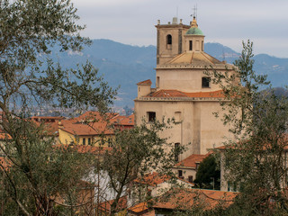 Santo Stefano Magra church and houses in the Lunigiana area of north Tuscany, Italy in La Spezia province. Vertical shot through olive trees. Wintry.