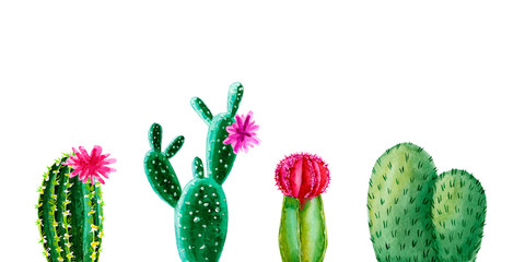 Exotic green cactus. Tropic cacti. Watercolor hand drawn botanical illustration. Clipart design for stickers, postcard, invitation, cover, print, poster, pattern, decor, wrapping, fabric, stationery.