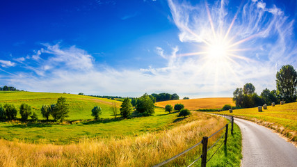 Landscape in summer with bright sun, meadows and golden cornfield in the background Wall mural