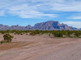 Road to the Kofas, Arizona