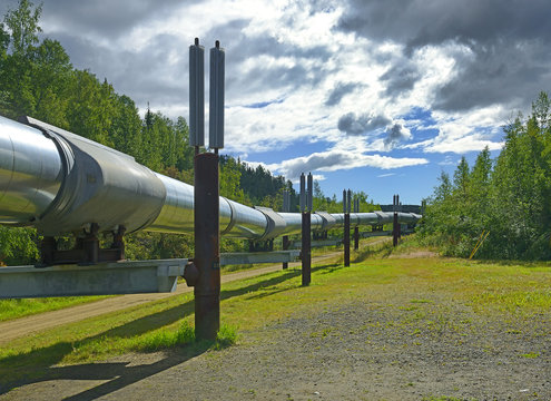 Trans-Alaska oil pipeline near Fairbanks, Alaska, USA