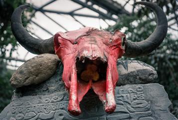 Roter Schädel eines Tieres mit Geweih