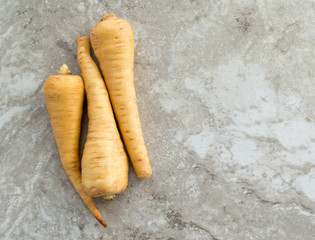 three ripe parsnips on a gray marble countertop with copy space