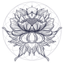Elegant element of a stylized flower with smooth lines. Stylized floral element for design.
