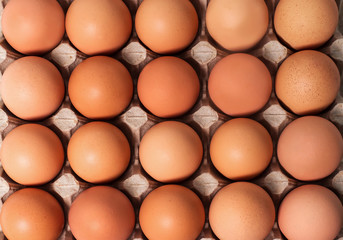 Brown fresh chicken eggs in paperboard container. Top view
