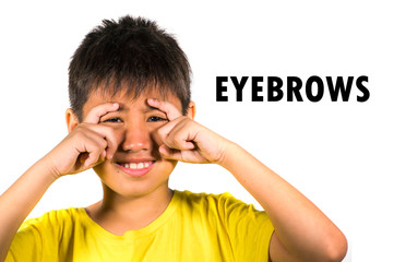 English language learning card with portrait of 8 years old child with fingers on his eyebrows isolated on white background as part of school cards set of body and face parts