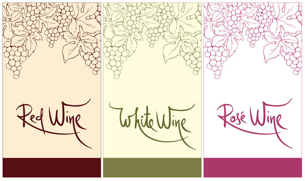 Label for red, white and rose wine. Vector illustration, set floral design element