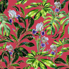 Seamless watercolor tropical pattern with green schefflera arboricola plant  and iris flowers, croton and dwarf umbrella tree. Exotic wallpaper pattern with tropic plants.