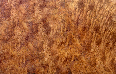 Afzelia burl wood striped for Picture prints interior decoration car, Exotic wooden beautiful pattern for crafts or abstract art texture background