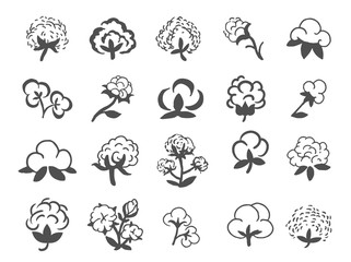 Natural organic cotton, pure cotton vector labels set. Hand drawn, typographic style icons or badges, stickers, signs.
