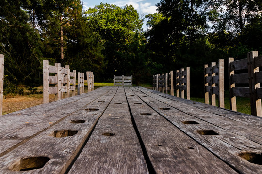 Giant long wooden medieval table bench in the forest