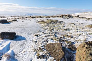 Schneebedecktes Lavagestein in Island
