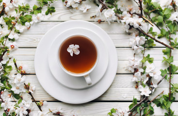 Cup of green tea and spring apricot blossom on a light grey wooden background. Rustic, top view.