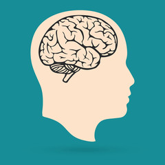 Head and Brain. Human profile with Brain. Vector flat illustation