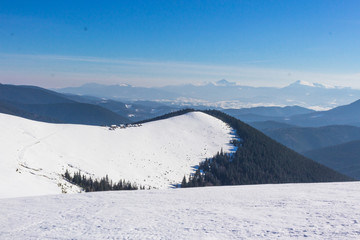 Snow-capped mountains and hills. Mountains Carpathians in Ukraine. Winter mountain landscape. Mountain Bukovel. Panorama from the top of the mountain. Freeride ski slope. Skiing and snowboarding.