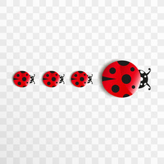 Cute cartoon ladybug family. Good luck symbol. Objects isolated on transparent background.