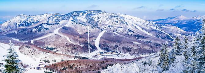 風景物語(志賀高原の冬)