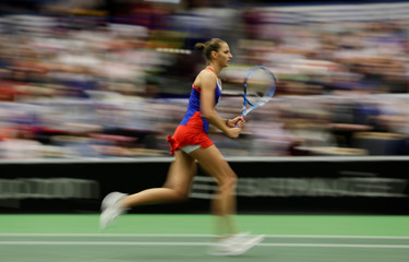 Fed Cup World Group - First Round - Czech Republic v Romania