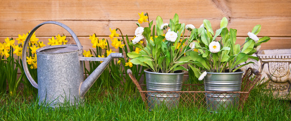 Watering can and flowers in a garden
