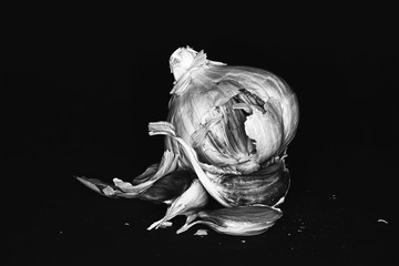 Garlic photographed in different situations and with macro objective also details clearly highlighted