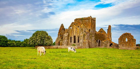 Hore Abbey ancient ruins, Irish landscape