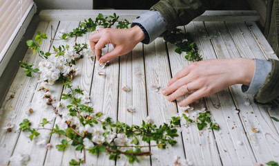 Romantic DIY composition. Woman hand holding beautiful white flowering apricot wreath on white table.