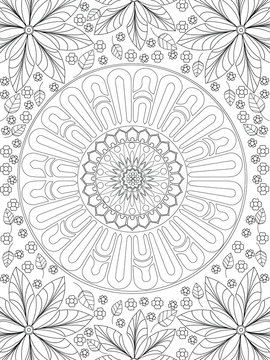 Background coloring antistress, drawings black lines and white background. Nature, flowers. Vector