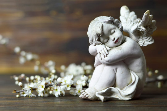 Cherub angel and spring branches