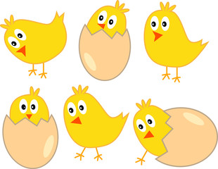 Cute yellow easter chickens with eggs - vector illustration isolated on white background