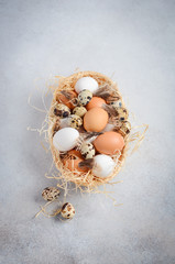 Different types of eggs in a basket on a gray concrete background.