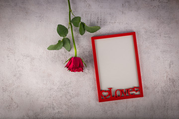 Red photo frame with rose flower. Love concept