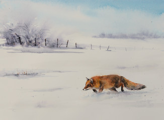 Winter scene from the wild nature- red fox running  in white snow. Picture created with watercolors.