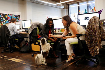 TaskRabbit CEO Stacy Brown-Philpot smiles as Gretchen Ornery feeds Zazoo a dog treat in San Francisco, California