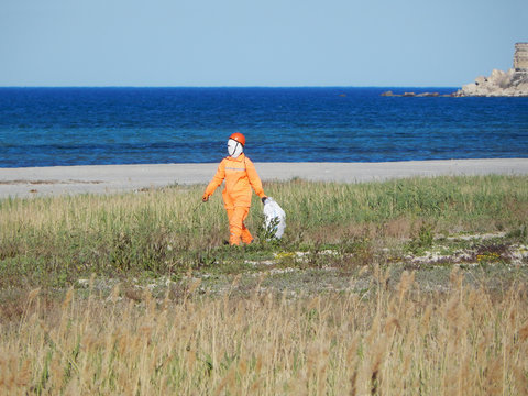 Cleaner on the beach.