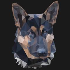 German shepherd low poly portrait