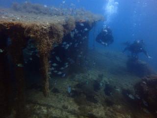 Scuba Diving Malta - HMS Maori