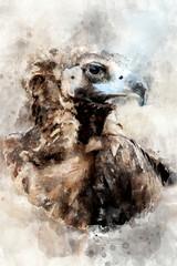 Vulture - watercolor illustration portrait