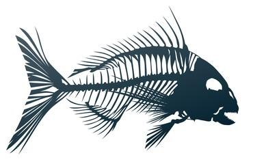 Skeleton of big predatory sea fish.