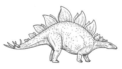 Drawing of dinosaur - hand sketch of stegosaurus, black and white illustration